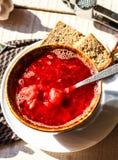 Sopa ucraniana da beterraba com feijões e alho Imagens de Stock Royalty Free