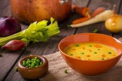 Sopa vegetal Fotos de archivo libres de regalías