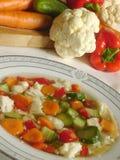 Sopa vegetal Fotografía de archivo libre de regalías