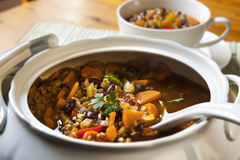Sopa vegetal foto de archivo libre de regalías