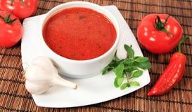 Sopa vegetal imagen de archivo