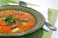 Sopa vegetal Fotografía de archivo