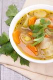Sopa vegetal foto de stock royalty free