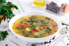 Sopa vegetal caseiro fresca com ovo Fotografia de Stock