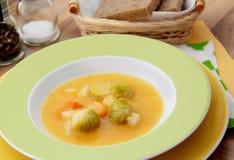 Sopa vegetal com couves de Bruxelas, cenoura, aipo e salsa Fotografia de Stock