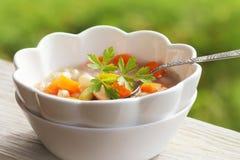 Sopa vegetal com feijão e cenouras no fundo verde Fotos de Stock