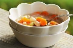 Sopa vegetal com feijão e cenouras no fundo verde Imagens de Stock