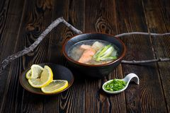 Sopa vegetal com peixes 2 fotografia de stock royalty free