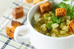 Sopa vegetal com pepinos conservados fotos de stock royalty free