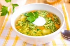 Sopa vegetal com salsa foto de stock