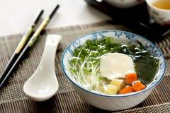 Sopa vegetal con el queso de soja Fotografía de archivo
