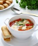 Sopa vegetal con farfalia. foto de archivo libre de regalías