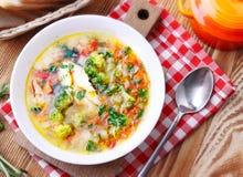 Sopa vegetal da galinha Foto de Stock