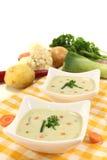 Sopa vegetal da nata com salsa Foto de Stock Royalty Free