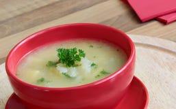 Sopa vegetal de la cebolla Fotos de archivo libres de regalías