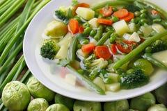 Sopa vegetal de la dieta Fotos de archivo libres de regalías
