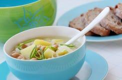 Sopa vegetal de los garbanzos de la legumbre con las patatas y el puerro Foto de archivo libre de regalías