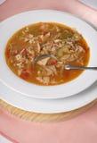 Sopa vegetal de Turquía Imagen de archivo