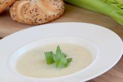 Sopa vegetal del apio Foto de archivo libre de regalías