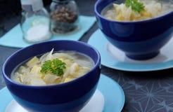 Sopa vegetal del hinojo con la cebolla, el ajo y patatas Foto de archivo libre de regalías