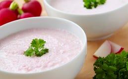 Sopa vegetal del rábano Cuenco de sopa poner crema del rábano rodeada por los ingredientes Fondo de madera Imagen de archivo