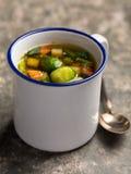 Sopa vegetal do vegetariano Fotos de Stock