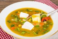 Sopa vegetal do vegetariano dietético com tofu fotos de stock royalty free