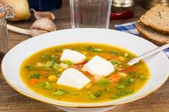 Sopa vegetal do vegetariano dietético com tofu imagem de stock