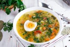 Sopa vegetal do verão com feijões, ervilhas, milho, cenouras, galinha, ovo, prato saudável saboroso para a dieta Imagem de Stock Royalty Free