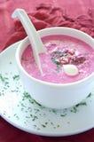 Sopa vegetal fria Fotografia de Stock Royalty Free