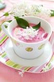 Sopa vegetal fria Imagens de Stock Royalty Free