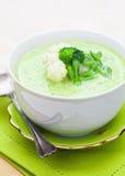 Sopa vegetal grossa Fotografia de Stock
