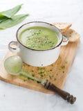 Sopa vegetal gruesa Imágenes de archivo libres de regalías
