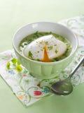 Sopa vegetal gruesa fotografía de archivo