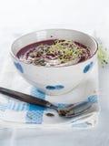 Sopa vegetal gruesa imagen de archivo