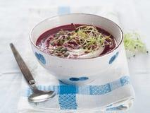 Sopa vegetal gruesa imagen de archivo libre de regalías