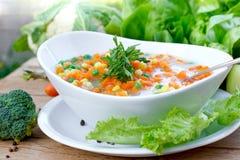 Sopa vegetal - refeição do vegetariano Fotos de Stock