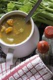 Sopa vegetal saboroso Imagens de Stock Royalty Free