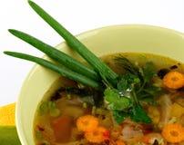 Sopa vegetal y lechuga del país Fotografía de archivo libre de regalías
