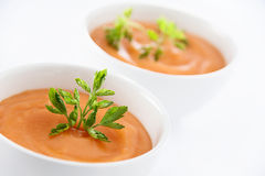 Sopa vegetariana Fotografía de archivo libre de regalías