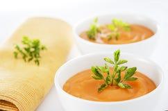 Sopa vegetariana Imagen de archivo libre de regalías