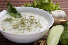 Sopa vegetariana Fotos de archivo