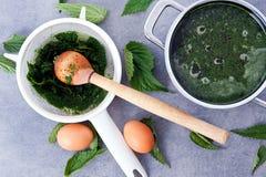 Sopa vegetariana de la ortiga Fotografía de archivo