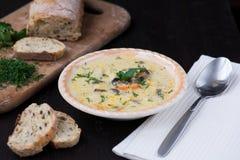 Sopa vegetariana hecha en casa de la crema de la seta Fotografía de archivo libre de regalías