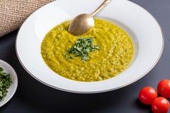 Sopa verde de la calabaza con perejil Fotografía de archivo