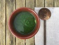 Sopa verde orgânica Imagem de Stock