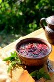 Sopa vermelha 'borscht ' foto de stock