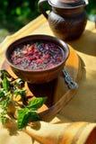 Sopa vermelha 'borscht ' imagem de stock royalty free