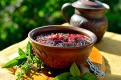Sopa vermelha ?borscht ? imagem de stock