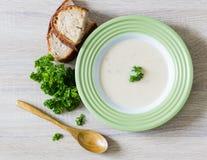 Sopa y perejil Imagen de archivo libre de regalías